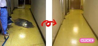 廊下清掃(岡山市北区O歯科医院様)施工事例#0551