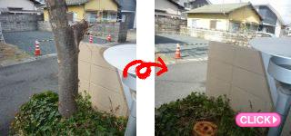 樹木伐採(岡山市南区Cマンション)施工事例#12641