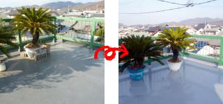 屋上防水塗装工事(岡山市中区E様邸)施工事例#5475